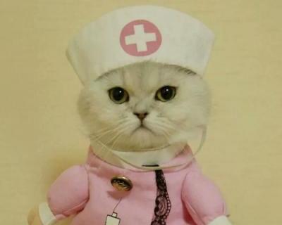 女猫的名字要萌点的_WWW.QQYA.COM