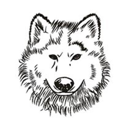 霸气孤狼个性头像_WWW.QQYA.COM