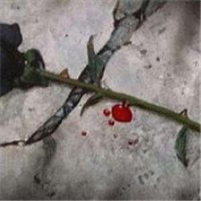 带刺的玫瑰图片流血头像_WWW.QQYA.COM
