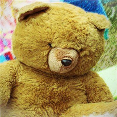 泰迪熊微信头像_WWW.QQYA.COM