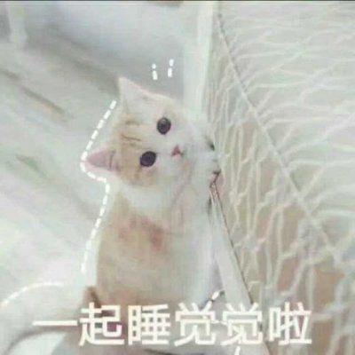 可爱卖萌头像_WWW.QQYA.COM