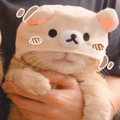 可爱小猫猫情头_WWW.QQYA.COM