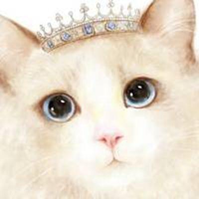 小公主布偶猫可爱头像_WWW.QQYA.COM