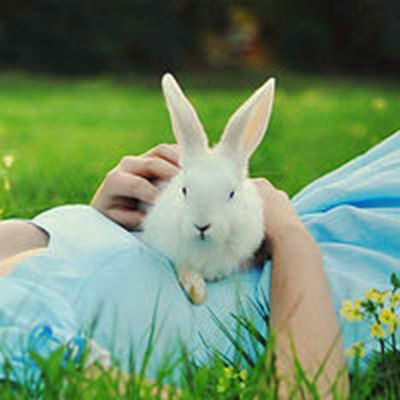 可爱小白兔图片头像_WWW.QQYA.COM