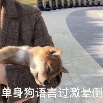 单身狗微信头像_WWW.QQYA.COM