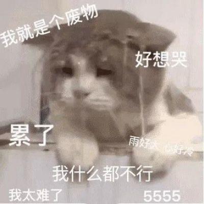 高清可爱带字的卑微系列表情包图片头像_WWW.QQYA.COM