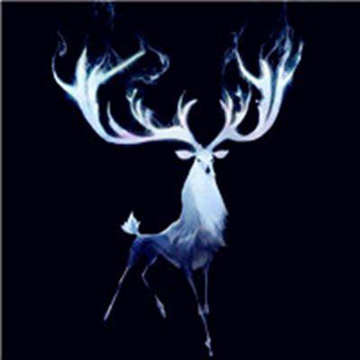 适合做头像的鹿图片_WWW.QQYA.COM