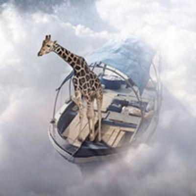 长颈鹿头像_WWW.QQYA.COM
