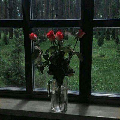 有关于花的暗色系头像_WWW.QQYA.COM