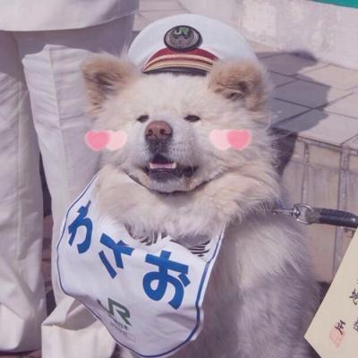 可爱小狗头像_WWW.QQYA.COM