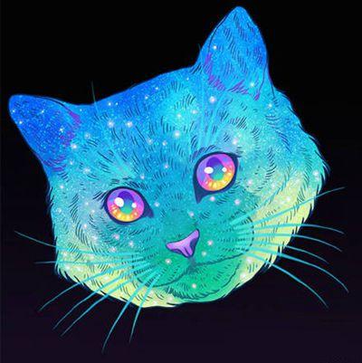 猫咪霸气图片头像_WWW.QQYA.COM