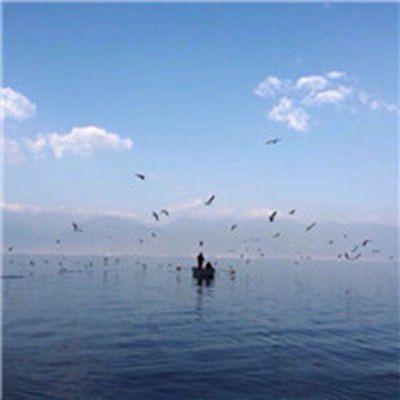 海边男生背影的微信头像_WWW.QQYA.COM