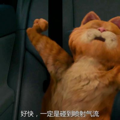 加菲猫可爱头像_WWW.QQYA.COM