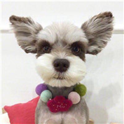 萌萌哒的小动物可爱动物情侣头像一对_WWW.QQYA.COM