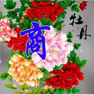 花开富贵图片微信头像_WWW.QQYA.COM