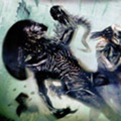 异形大战铁血战士游戏人物头像图片精选截图_WWW.QQYA.COM