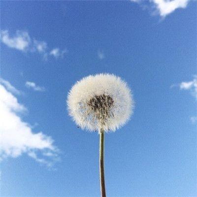 微信最吉利的好看头像蓝天图片_WWW.QQYA.COM