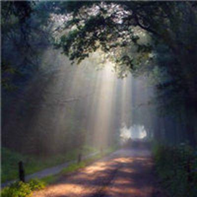 一米阳光的温暖图片头像_WWW.QQYA.COM