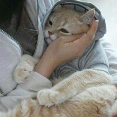 女生抱猫头像_WWW.QQYA.COM