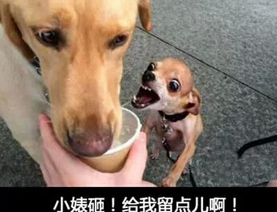 幽默诙谐的说说_WWW.QQYA.COM
