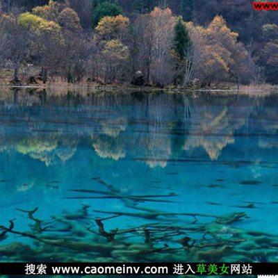 九寨沟旅游风景图库_WWW.QQYA.COM