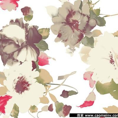 姹紫嫣红的牡丹花图片_WWW.QQYA.COM