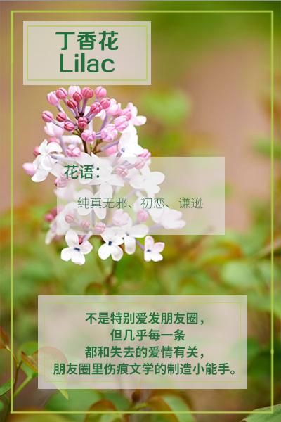 10000种花语加图片大全_WWW.QQYA.COM