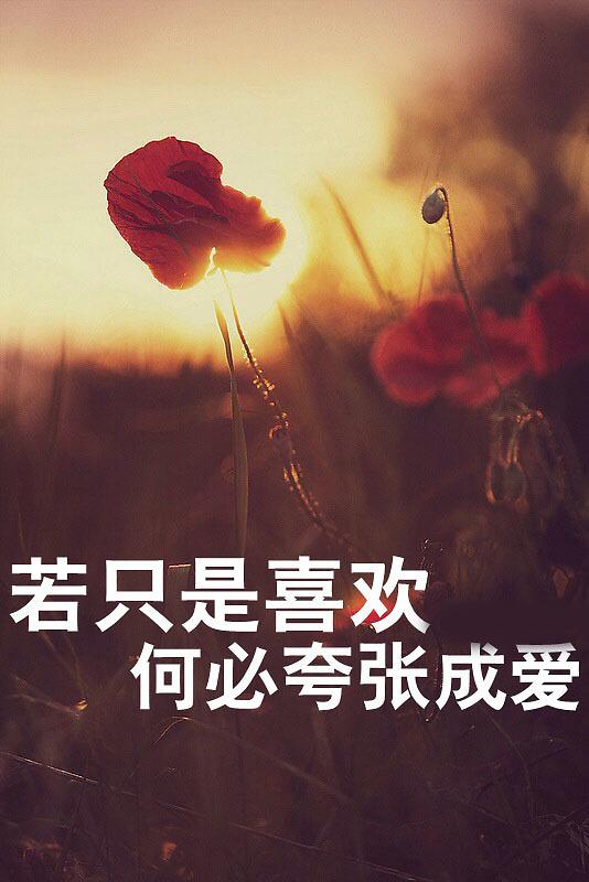 女生伤感文字图片大全_WWW.QQYA.COM