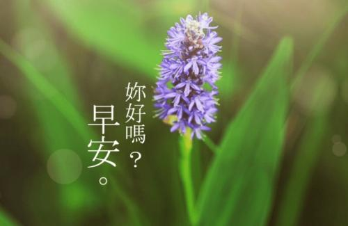 鼠年最感动优美早安心语图片_WWW.QQYA.COM