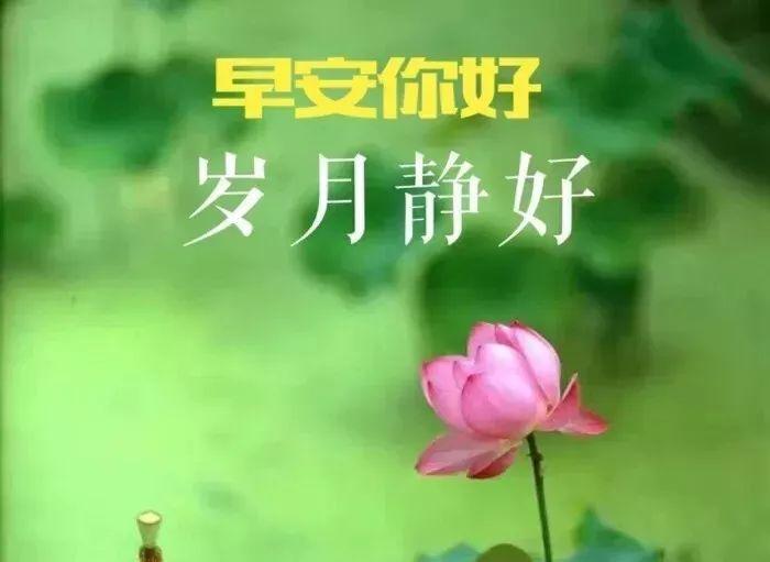早安最美最火图片大全_WWW.QQYA.COM